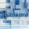 Выставки в Новосергиевке